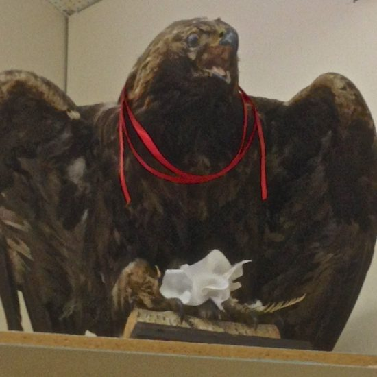 Cultural Artifact: Eagle